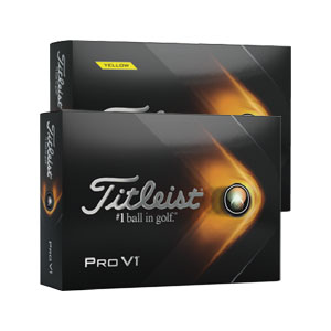 8101 New 2019 Titleist Pro V1 Golf Balls
